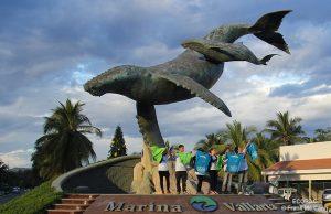 ecobac-ecologia-y-conservacion-de-ballenas-puerto-vallarta-02