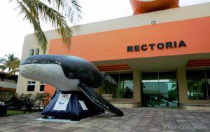 ecobac-ecologia-y-conservacion-de-ballenas-puerto-vallarta-04