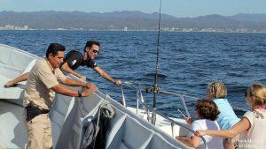 ecobac-ecologia-y-conservacion-de-ballenas-puerto-vallarta-18