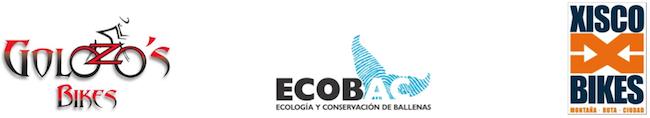 Footer Rally Ecobac 2014 Ballenarte Festival